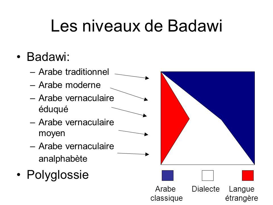Les niveaux de Badawi Badawi: –Arabe traditionnel –Arabe moderne –Arabe vernaculaire éduqué –Arabe vernaculaire moyen –Arabe vernaculaire analphabète
