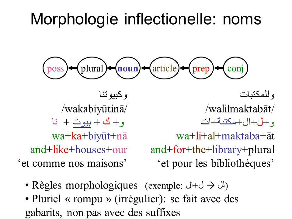 Morphologie inflectionelle: noms وللمكتبات /walilmaktabāt/ و+ل+ال+مكتبة+ات wa+li+al+maktaba+āt and+for+the+library+plural et pour les bibliothèques co