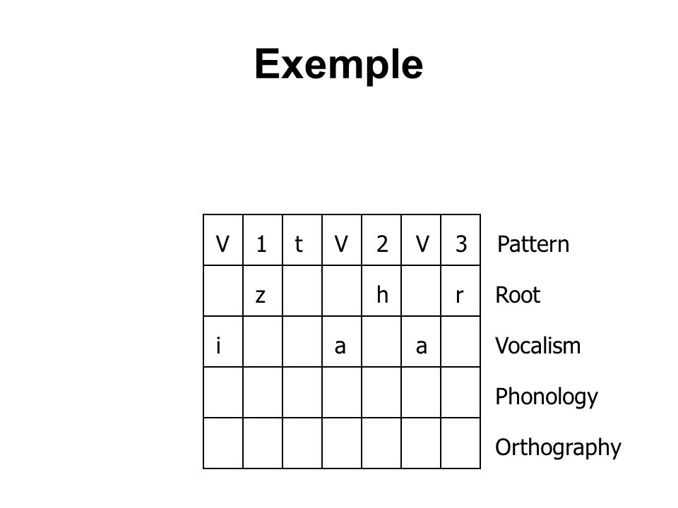 Exemple V1tV2V3zhriaa Pattern Root Vocalism Phonology Orthography