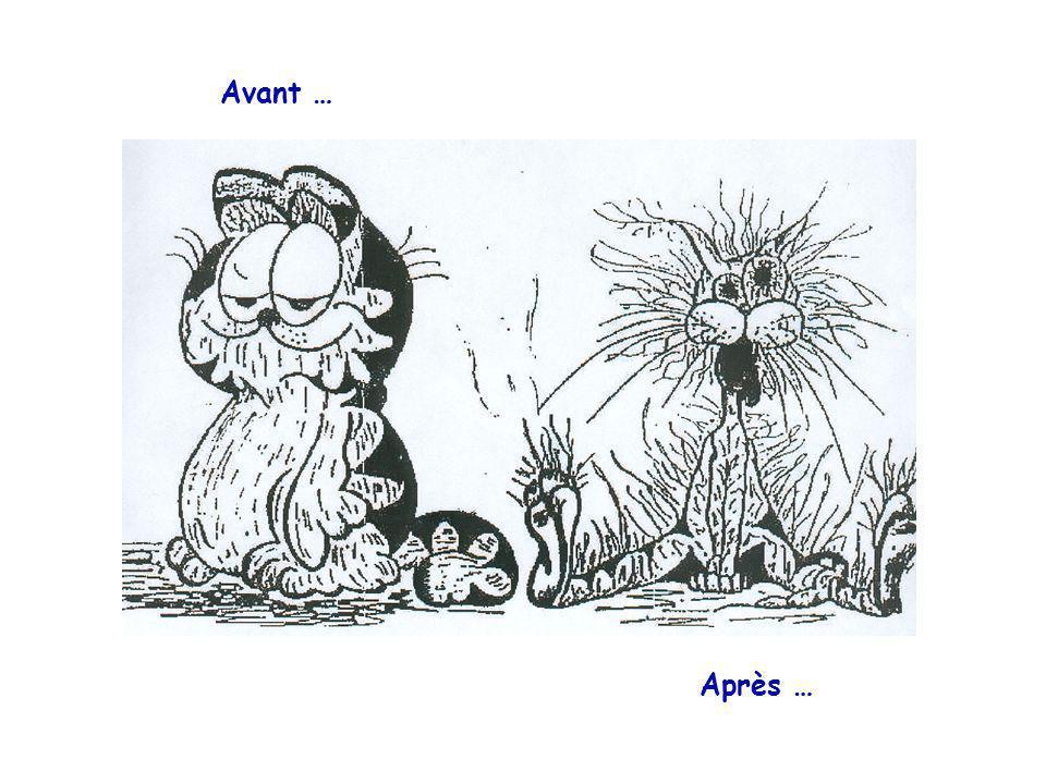 Avant … Après …