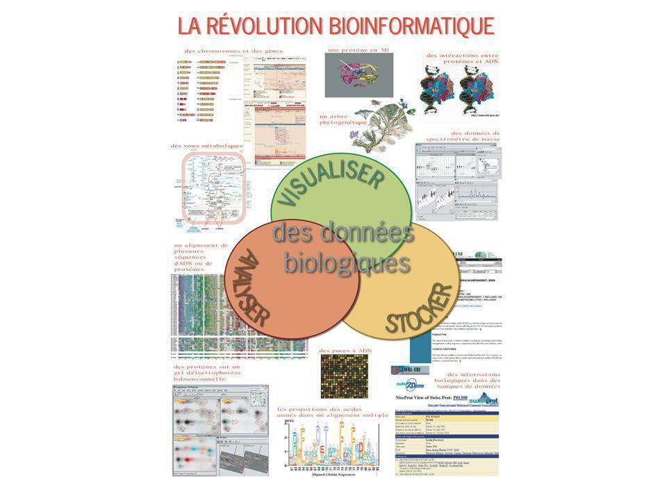 Bioinformatique- application 3: analyse de la séquence primaire des protéines Caractérisation physicochimique Prédiction de la localisation subcellulaire (signal séquences, transit peptides); Recherche de régions transmembranaires; Recherche des régions fonctionnelles (domaines conservés) Recherche de sites de modifications post- traductionelles (PTM).