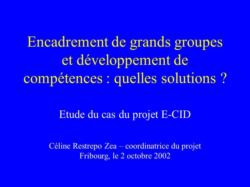 Encadrement de grands groupes et développement de compétences : quelles solutions .