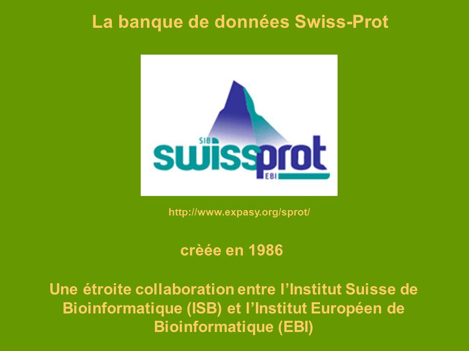 http://www.expasy.org/sprot/ La banque de données Swiss-Prot crèée en 1986 Une étroite collaboration entre lInstitut Suisse de Bioinformatique (ISB) e