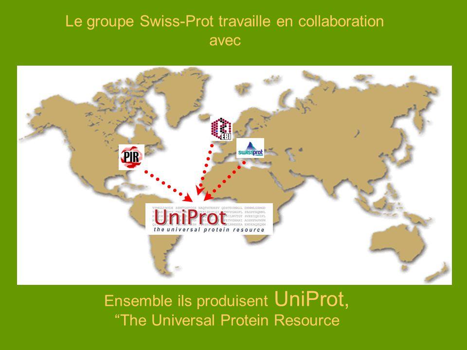 Le groupe Swiss-Prot travaille en collaboration avec Ensemble ils produisent UniProt, The Universal Protein Resource