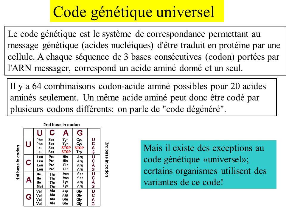 Code génétique universel Le code génétique est le système de correspondance permettant au message génétique (acides nucléiques) d'être traduit en prot