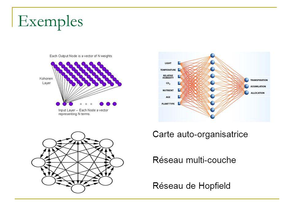 Exemples Carte auto-organisatrice Réseau multi-couche Réseau de Hopfield