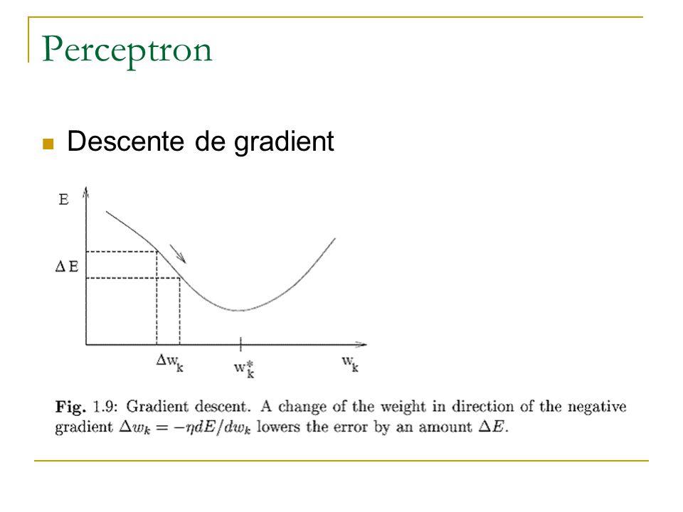 Perceptron Descente de gradient