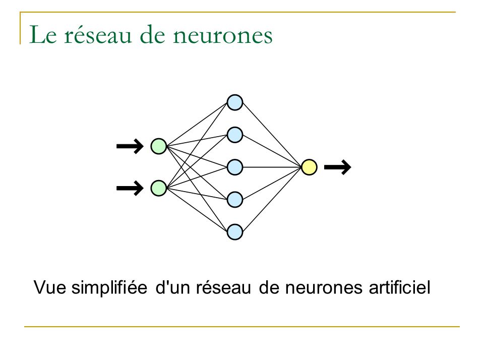 Le neurone Neurone biologique Neurone artificiel