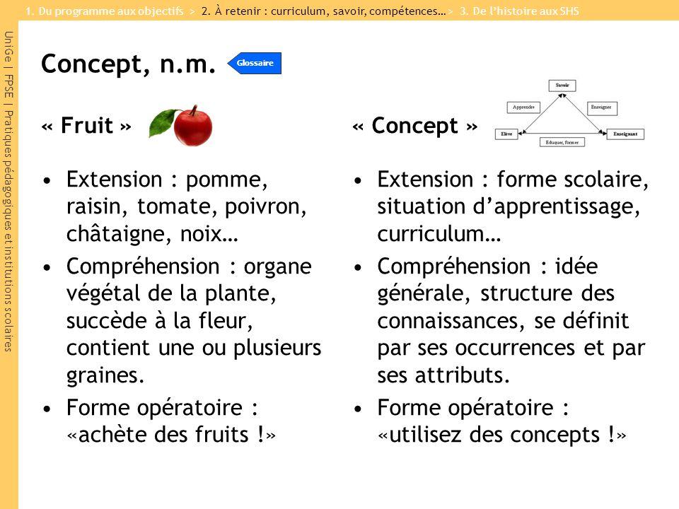 UniGe | FPSE | Pratiques pédagogiques et institutions scolaires Concept, n.m. « Fruit » Extension : pomme, raisin, tomate, poivron, châtaigne, noix… C