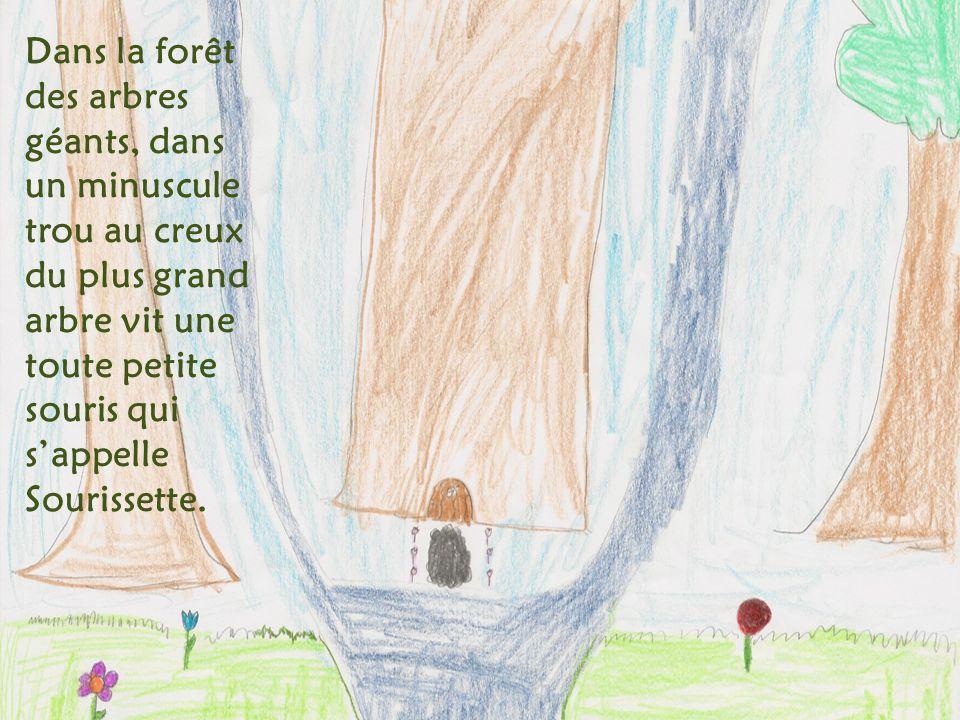 Dans la forêt des arbres géants, dans un minuscule trou au creux du plus grand arbre vit une toute petite souris qui sappelle Sourissette.