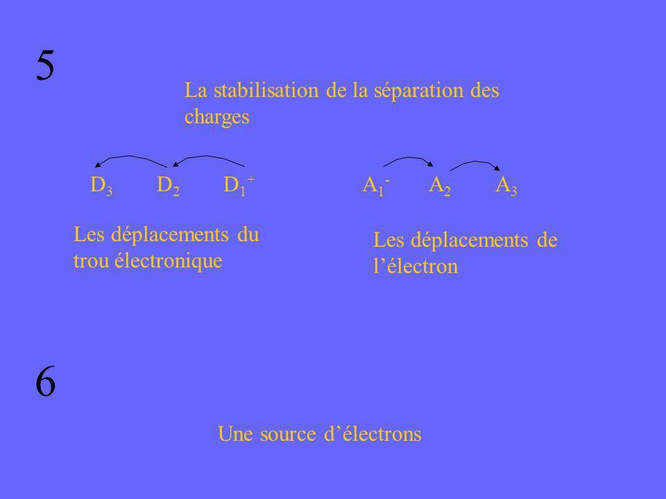 5 La stabilisation de la séparation des charges D3D3 D2D2 D1+D1+ Les déplacements du trou électronique A1-A1- A2A2 A3A3 Les déplacements de lélectron