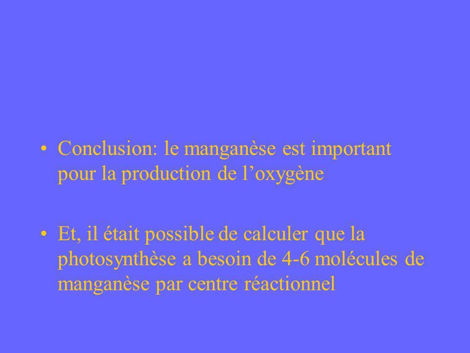 Conclusion: le manganèse est important pour la production de loxygène Et, il était possible de calculer que la photosynthèse a besoin de 4-6 molécules