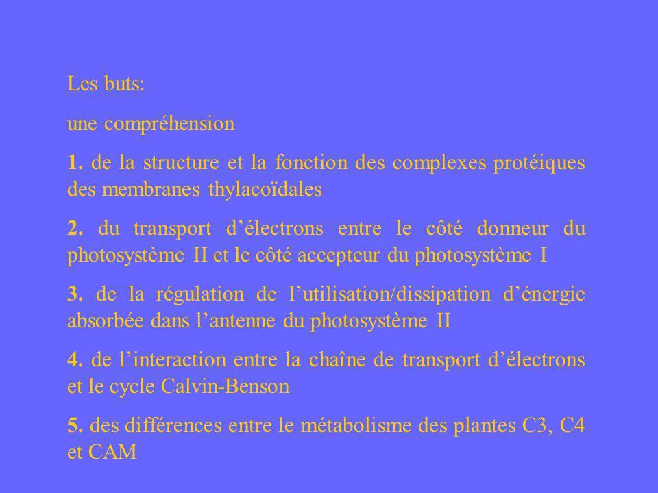 Réduction = Plastoquinone + 2 électrons + 2 protons Plusieurs photosystèmes II partagent 1 pool de plastoquinone.