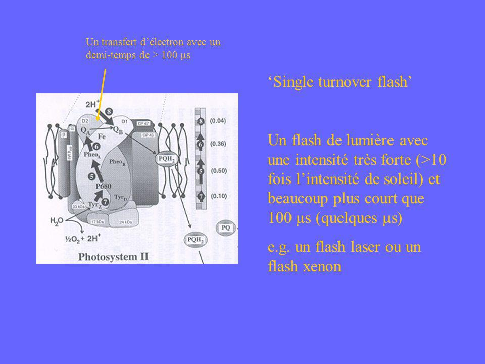 Un transfert délectron avec un demi-temps de > 100 µs Single turnover flash Un flash de lumière avec une intensité très forte (>10 fois lintensité de