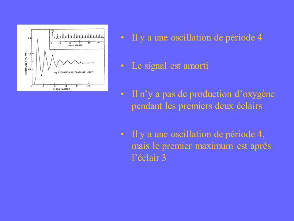 Il y a une oscillation de période 4 Le signal est amorti Il ny a pas de production doxygène pendant les premiers deux éclairs Il y a une oscillation d