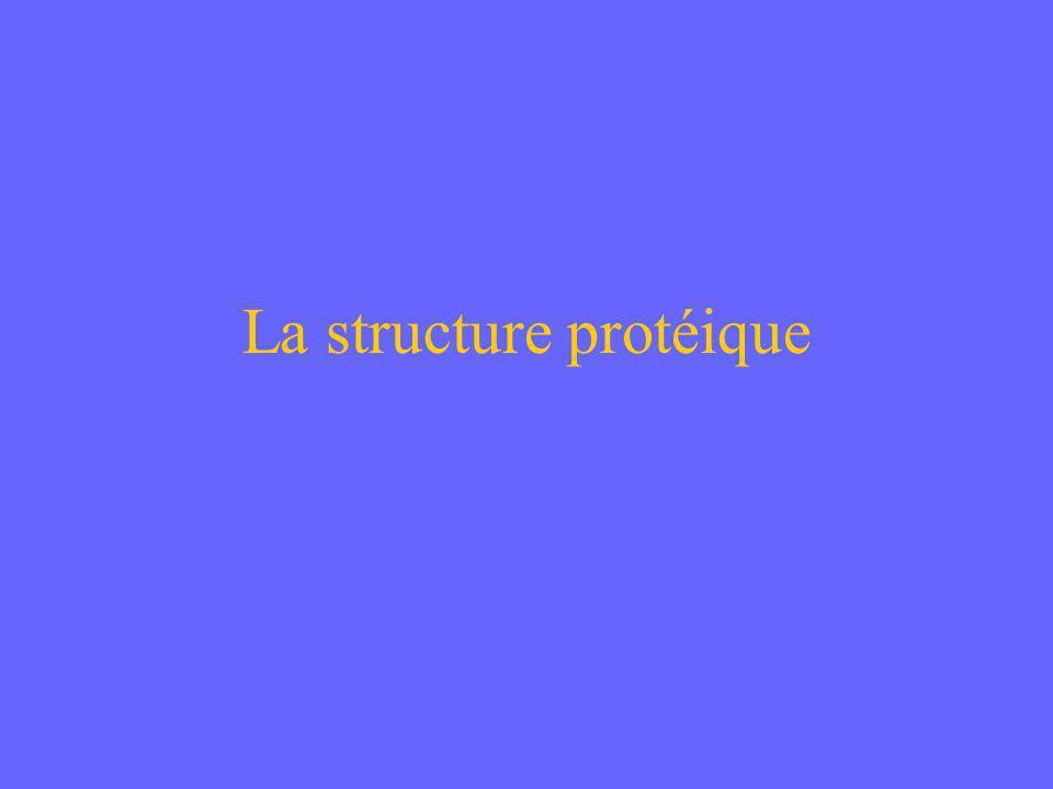 La structure protéique