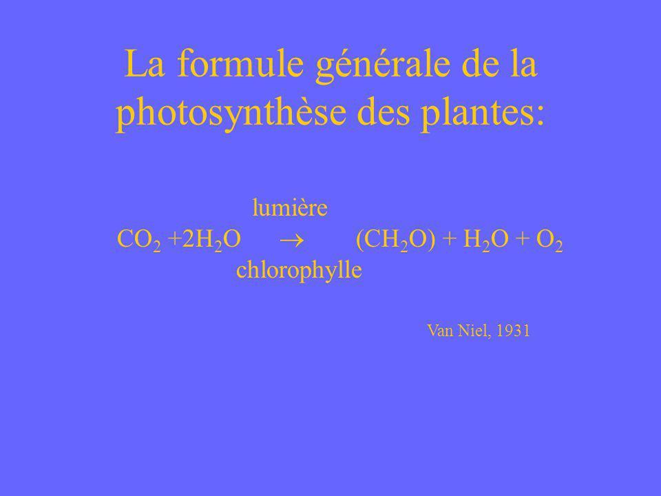 Derrière la réaction générale de la photosynthèse se cachent deux processus: 1.Une chaîne de transport délectrons comparable à celle trouvé dans les mitochondries 2.Un cycle des réactions biochimiques comparable au cycle de lacide citrique dans les mitochondries