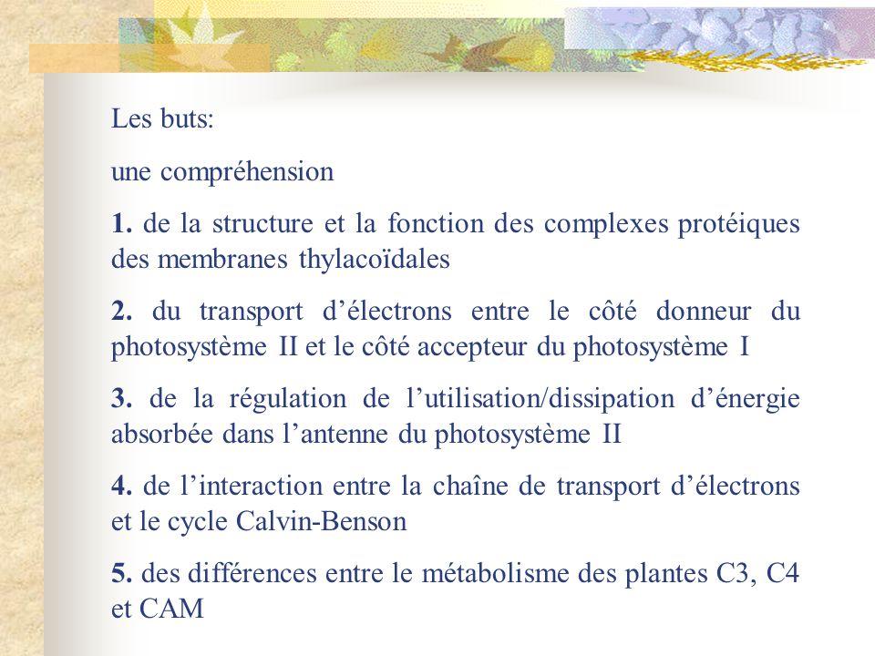 Les buts: une compréhension 1. de la structure et la fonction des complexes protéiques des membranes thylacoïdales 2. du transport délectrons entre le