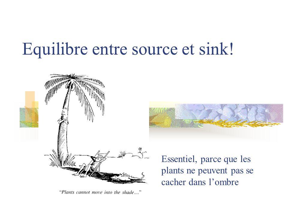 Equilibre entre source et sink! Essentiel, parce que les plants ne peuvent pas se cacher dans lombre
