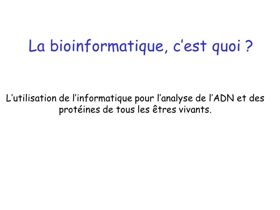 La bioinformatique, cest quoi ? Lutilisation de linformatique pour lanalyse de lADN et des protéines de tous les êtres vivants.