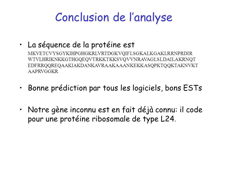Conclusion de lanalyse La séquence de la protéine est MKVETCVYSGYKIHPGHGKRLVRTDGKVQIFLSGKALKGAKLRRNPRDIR WTVLHRIKNKKGTHGQEQVTRKKTKKSVQVVNRAVAGLSLDAILA