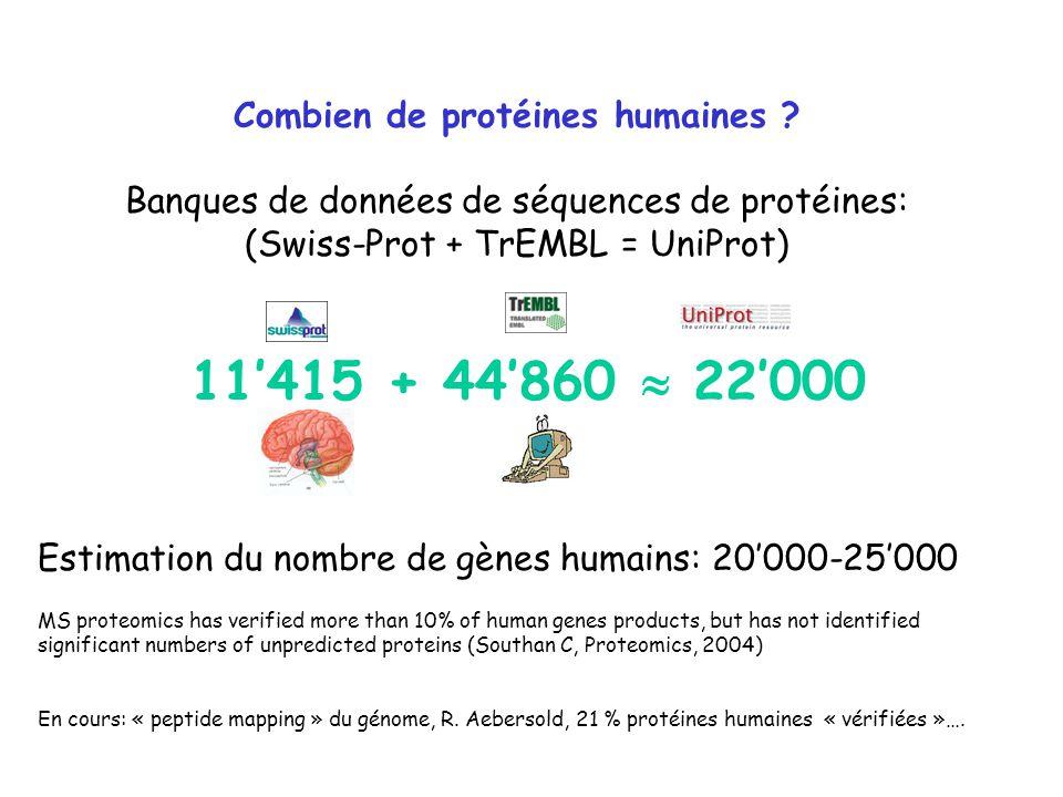 Combien de protéines humaines ? Banques de données de séquences de protéines: (Swiss-Prot + TrEMBL = UniProt) 11415 + 44860 22000 Estimation du nombre