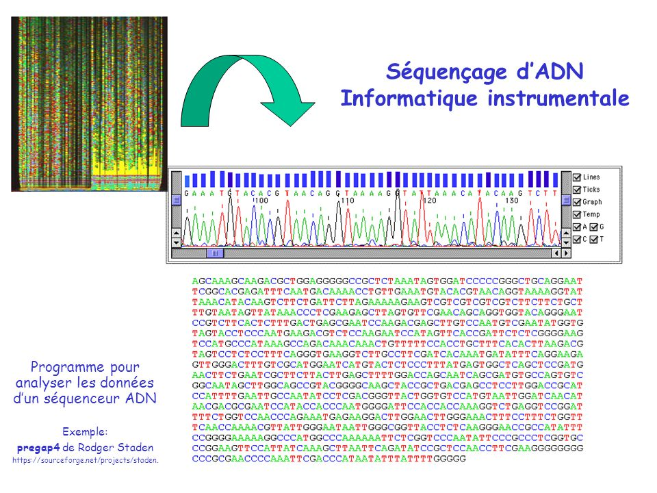 Séquence dune protéine « inconnue » de C.elegans >seq4 MSTNNYQTLSQNKADRMGPGGSRRPRNSQHATASTPSASSCKEQQKDVEH EFDIIAYKTTFWRTFFFYALSFGTCGIFRLFLHWFPKRLIQFRGKRCSVE NADLVLVVDNHNRYDICNVYYRNKSGTDHTVVANTDGNLAELDELRWFKY RKLQYTWIDGEWSTPSRAYSHVTPENLASSAPTTGLKADDVALRRTYFGP NVMPVKLSPFYELVYKEVLSPFYIFQAISVTVWYIDDYVWYAALIIVMSL YSVIMTLRQTRSQQRRLQSMVVEHDEVQVIRENGRVLTLDSSEIVPGDVL VIPPQGCMMYCDAVLLNGTCIVNESMLTGESIPITKSAISDDGHEKIFSI DKHGKNIIFNGTKVLQTKYYKGQNVKALVIRTAYSTTKGQLIRAIMYPKP ADFKFFRELMKFIGVLAIVAFFGFMYTSFILFYRGSSIGKIIIRALDLVT IVVPPALPAVMGIGIFYAQRRLRQKSIYCISPTTINTCGAIDVVCFDKTG TLTEDGLDFYALRVVNDAKIGDNIVQIAANDSCQNVVRAIATCHTLSKIN NELHGDPLDVIMFEQTGYSLEEDDSESHESIESIQPILIRPPKDSSLPDC QIVKQFTFSSGLQRQSVIVTEEDSMKAYCKGSPEMIMSLCRPETVPENFH DIVEEYSQHGYRLIAVAEKELVVGSEVQKTPRQSIECDLTLIGLVALENR LKPVTTEVIQKLNEANIRSVMVTGDNLLTALSVARECGIIVPNKSAYLIE HENGVVDRRGRTVLTIREKEDHHTERQPKIVDLTKMTNKDCQFAISGSTF SVVTHEYPDLLDQLVLVCNVFARMAPEQKQLLVEHLQDVGQTVAMCGDGA NDCAALKAAHAGISLSEAEASIAAPFTSKVADIRCVITLISEGRAALVTS YSAFLCMAGYSLTQFISILLLYWIATSYSQMQFLFIDIAIVTNLAFLSSK TRAHKELASTPPPTSILSTASMVSLFGQLAIGGMAQVAVFCLITMQSWFI PFMPTHHDNDEDRKSLQGTAIFYVSLFHYIVLYFVFAAGPPYRASIASNK AFLISMIGVTVTCIAIVVFYVTPIQYFLGCLQMPQEFRFIILAVATVTAV ISIIYDRCVDWISERLREKIRQRRKGA
