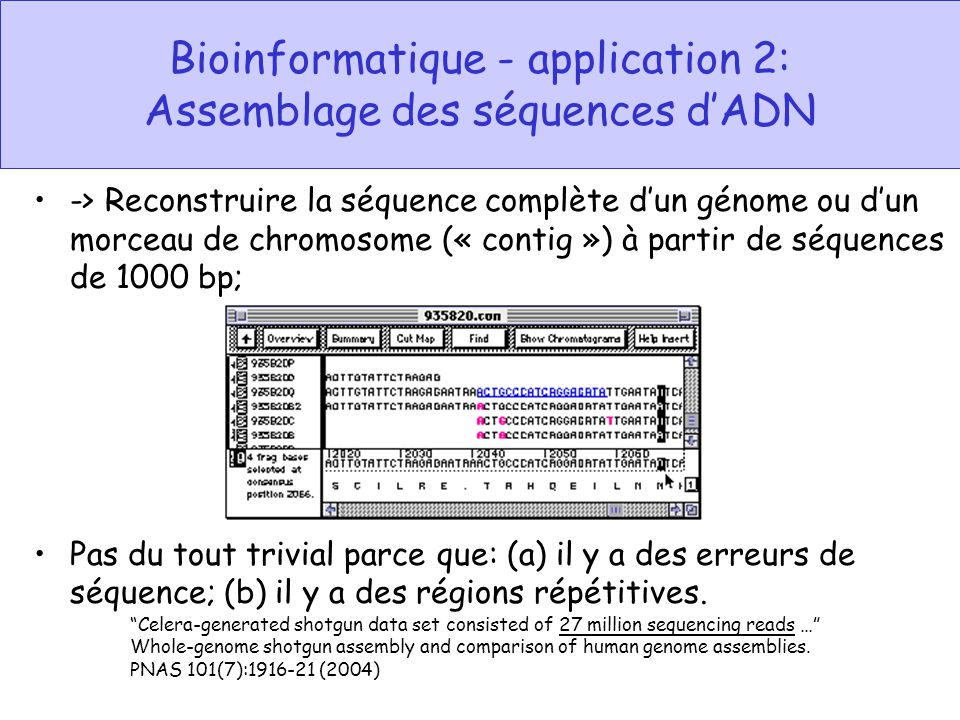 Bioinformatique - application 2: Assemblage des séquences dADN -> Reconstruire la séquence complète dun génome ou dun morceau de chromosome (« contig