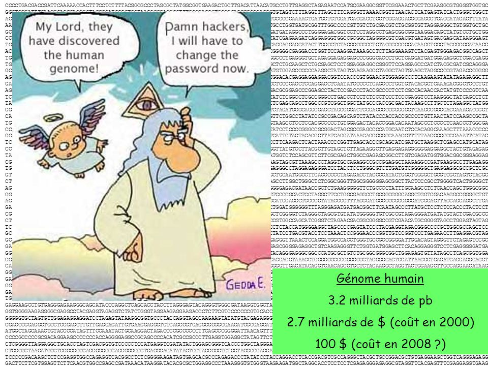 Bioinformatique - application 3: Analyse de séquence ADN Détection des régions codantes; Recherche de similarité (BLAST) Analyse des sites de restriction (enzymes); Traduction ADN en protéine; Détection de régions de basse complexité; Détection de séquences « repeats » comme les microsatellites, minisatellites, Alu repeats, etc.; Détection de régions ADN importantes non-codantes comme les signaux de transcription (promoteur), origines de la réplication, etc.; Détection de séquences de tARN et autres types de ARN (exemples: rARN, uARN, tmARN).