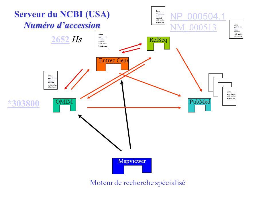 Moteur de recherche spécialisé OMIM Entrez Gene RefSeq Serveur du NCBI (USA) Numéro daccession PubMed Mapviewer Gene assNT_02 5965.