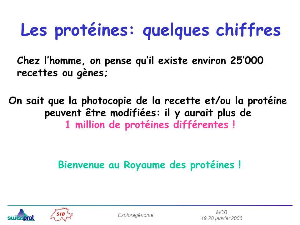 MCB 19-20 janvier 2006 Exploragénome Les protéines: quelques chiffres Chez lhomme, on pense quil existe environ 25000 recettes ou gènes; On sait que la photocopie de la recette et/ou la protéine peuvent être modifiées: il y aurait plus de 1 million de protéines différentes .