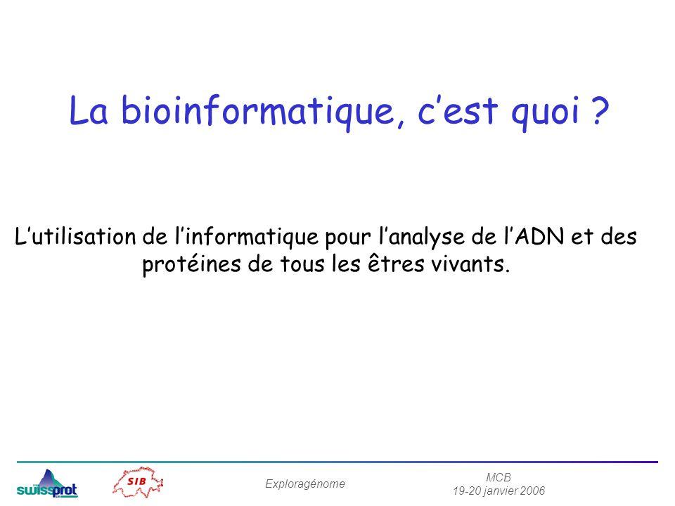 MCB 19-20 janvier 2006 Exploragénome La bioinformatique, cest quoi ? Lutilisation de linformatique pour lanalyse de lADN et des protéines de tous les