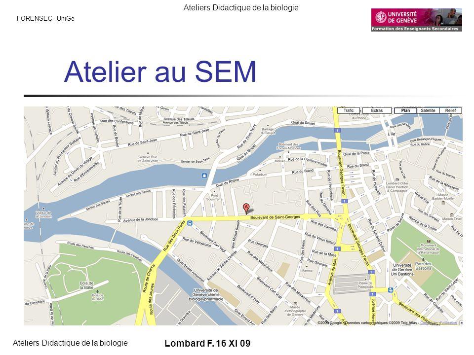 FORENSEC UniGe Ateliers Didactique de la biologie Lombard F. 16 XI 09 Atelier au SEM Rue des gazomètres Maps-google