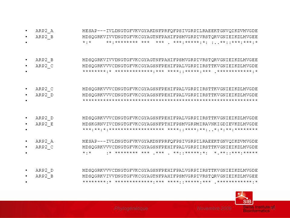 Novembre 2009Phylogénétique10 ARP2_A MESAP---IVLDNGTGFVKVGYAKDNFPRFQFPSIVGRPILRAEEKTGNVQIKDVMVGDE ARP2_B MDSQGRKVIVVDNGTGFVKCGYAGTNFPAHIFPSMVGRPIVRSTQ