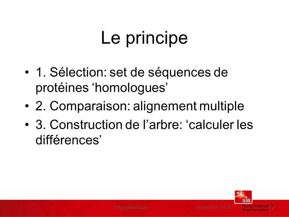 Novembre 2009Phylogénétique12 Le principe 1. Sélection: set de séquences de protéines homologues 2. Comparaison: alignement multiple 3. Construction d