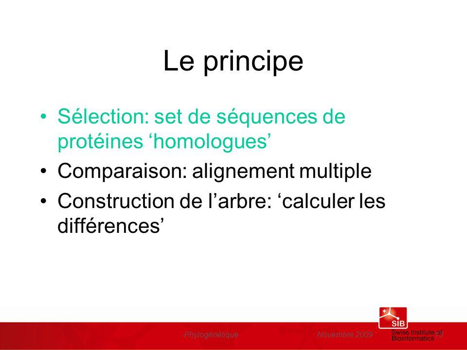 Novembre 2009Phylogénétique13 Le principe Sélection: set de séquences de protéines homologues Comparaison: alignement multiple Construction de larbre: