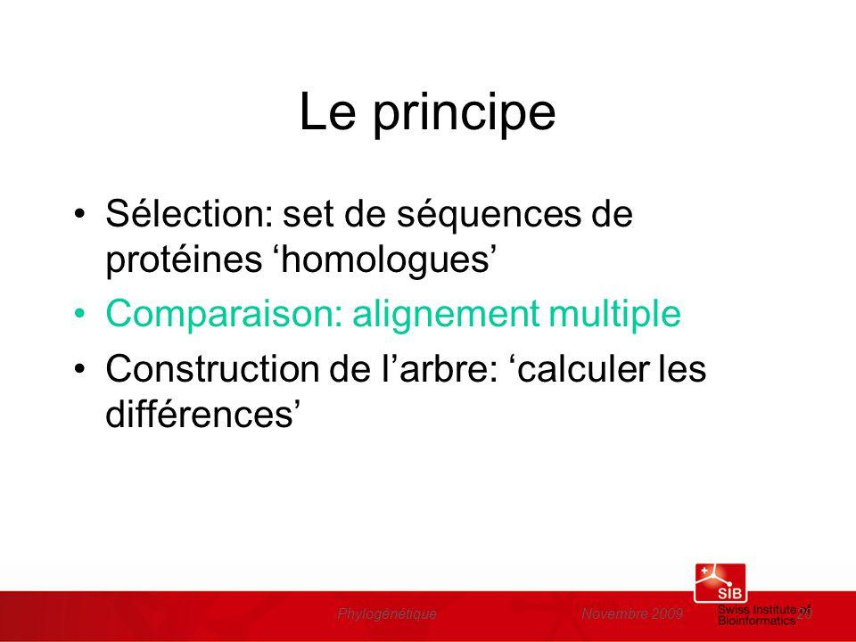 Novembre 2009Phylogénétique20 Le principe Sélection: set de séquences de protéines homologues Comparaison: alignement multiple Construction de larbre: