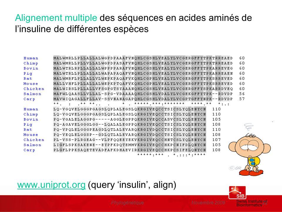 Novembre 2009Phylogénétique22 Alignement multiple des séquences en acides aminés de linsuline de différentes espèces www.uniprot.orgwww.uniprot.org (q