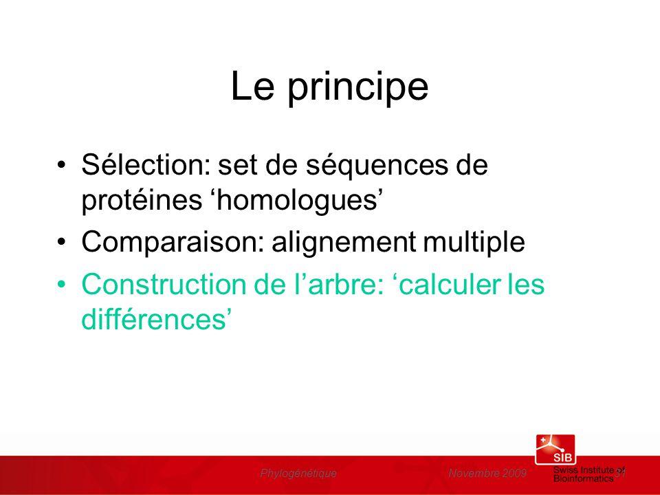 Novembre 2009Phylogénétique31 Le principe Sélection: set de séquences de protéines homologues Comparaison: alignement multiple Construction de larbre: