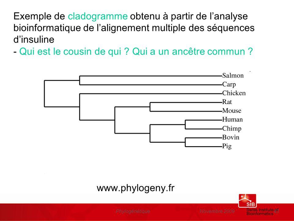 Novembre 2009Phylogénétique43 Exemple de cladogramme obtenu à partir de lanalyse bioinformatique de lalignement multiple des séquences dinsuline - Qui