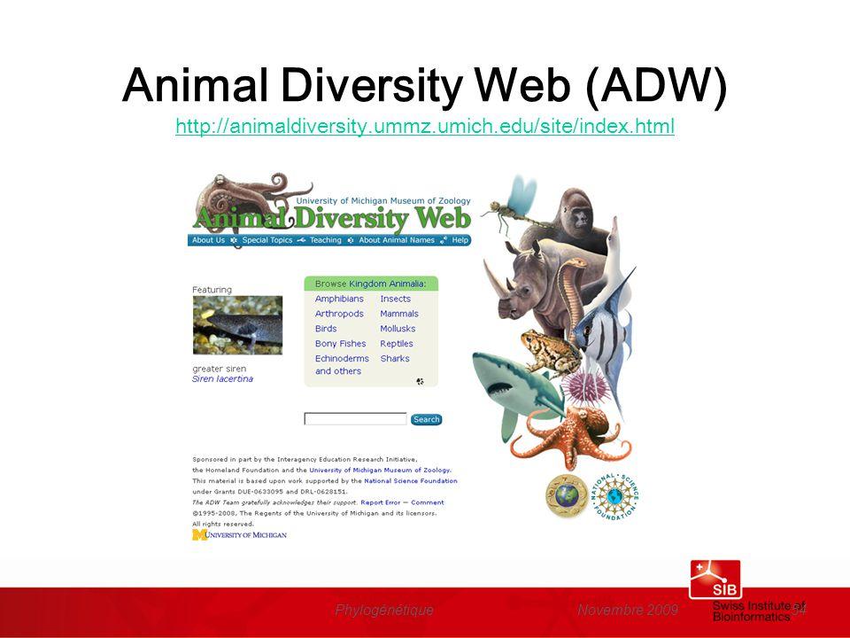 Novembre 2009Phylogénétique54 Animal Diversity Web (ADW) http://animaldiversity.ummz.umich.edu/site/index.html http://animaldiversity.ummz.umich.edu/s