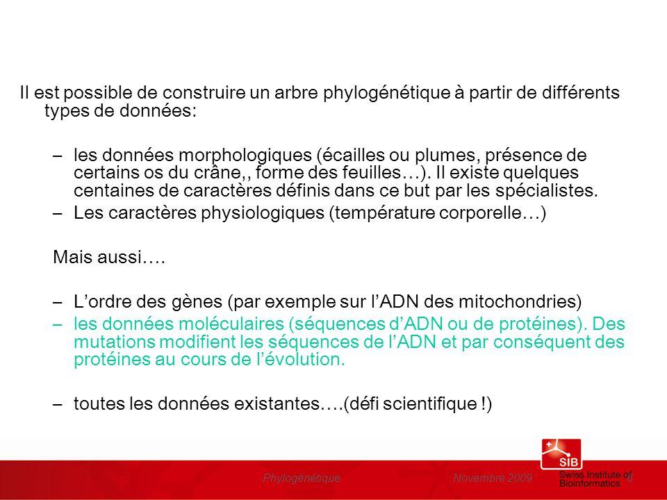 Novembre 2009Phylogénétique6 Il est possible de construire un arbre phylogénétique à partir de différents types de données: –les données morphologique