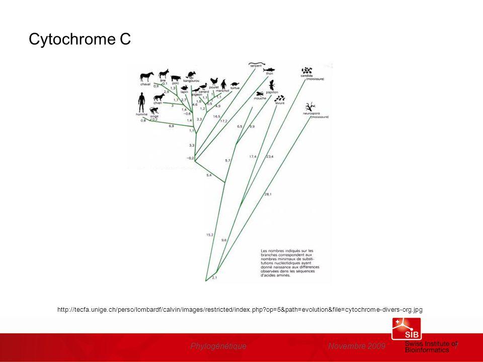 Novembre 2009Phylogénétique38 Arbres (cladogrammes) B A Roots Internal nodes CDEFG B A CDEFG End nodes Branches
