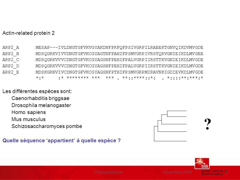 Novembre 2009Phylogénétique20 Le principe Sélection: set de séquences de protéines homologues Comparaison: alignement multiple Construction de larbre: calculer les différences