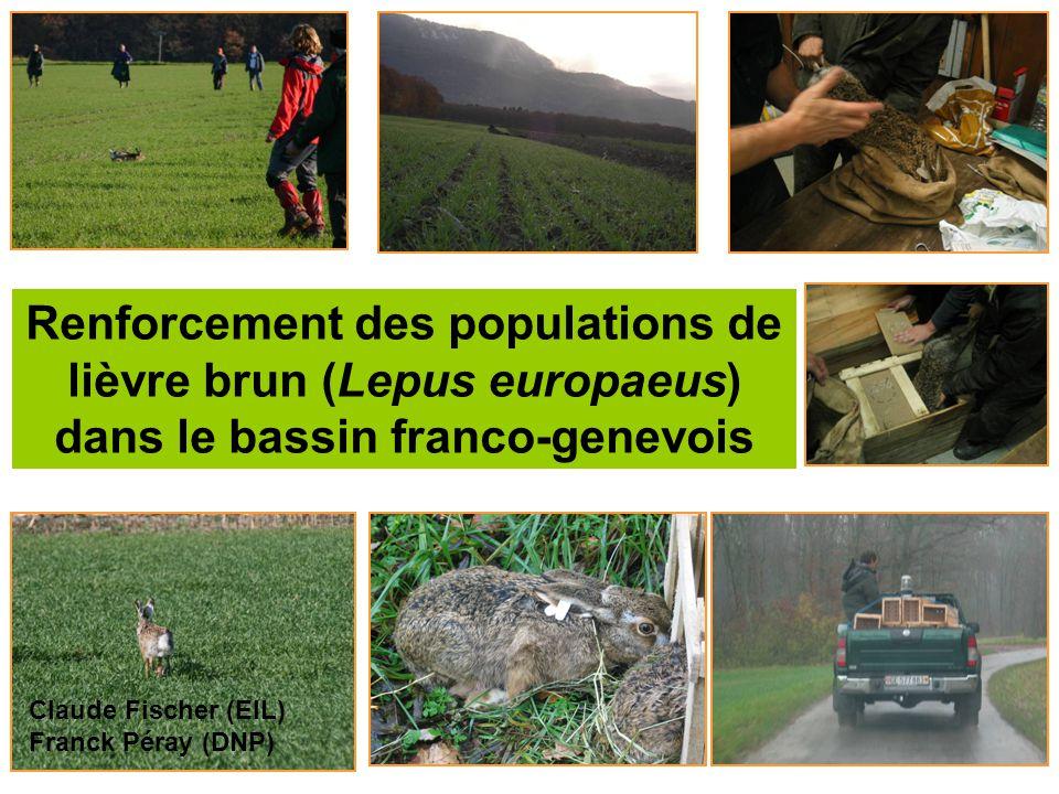 Renforcement des populations de lièvre brun (Lepus europaeus) dans le bassin franco-genevois Claude Fischer (EIL) Franck Péray (DNP)
