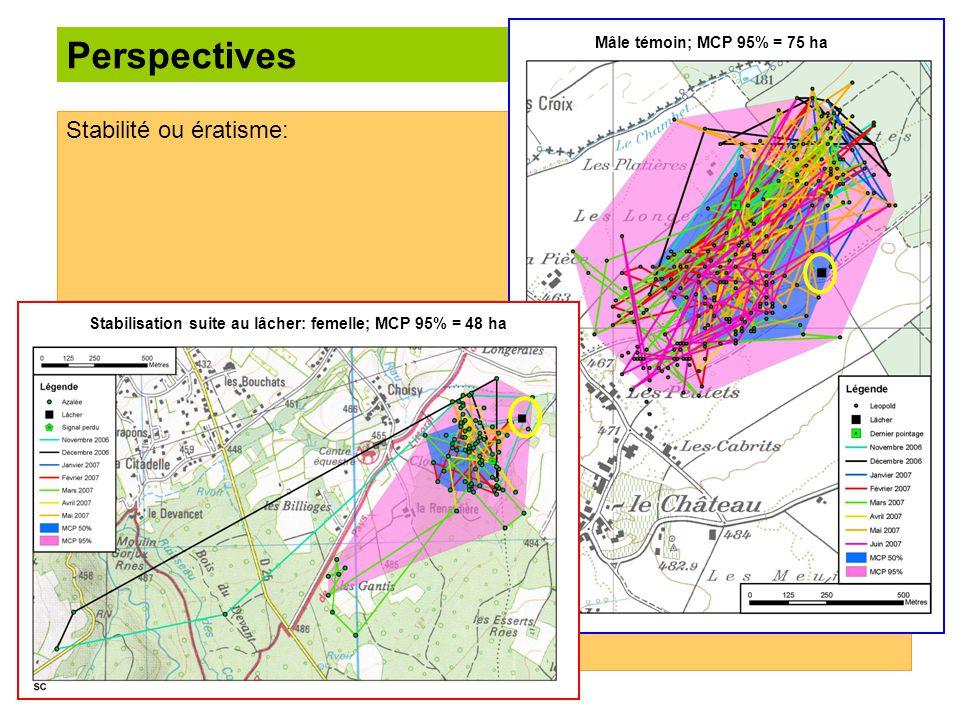 Perspectives Stabilité ou ératisme: Mâle témoin; MCP 95% = 75 ha Stabilisation suite au lâcher: femelle; MCP 95% = 48 ha