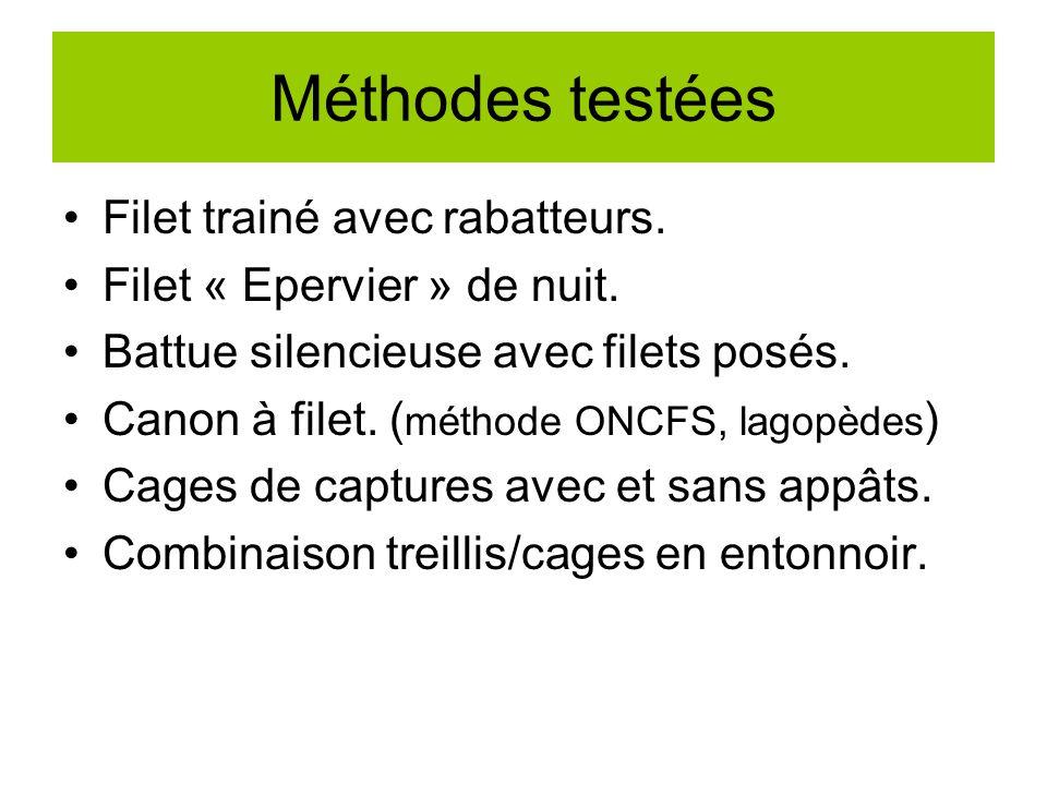 Méthodes testées Filet trainé avec rabatteurs.Filet « Epervier » de nuit.