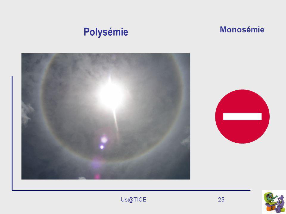 Us@TICE25 Polysémie Monosémie