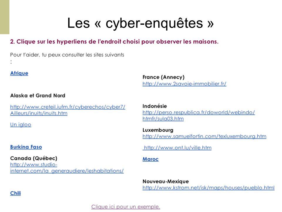 Orléans, CFA, 20 Mars 2008 - M. Bétrancourt 10 Les « cyber-enquêtes »