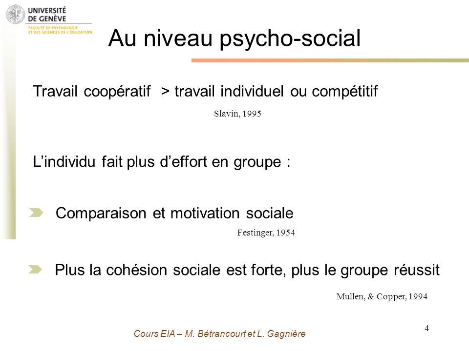 Grenoble 13 Novembre 2009 - M. Bétrancourt 4 Cours EIA – M. Bétrancourt et L. Gagnière Au niveau psycho-social Travail coopératif > travail individuel